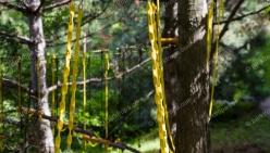 parktropa-rope-park-5
