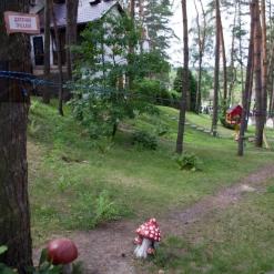 verevochnyj-park-luck-tropa-34