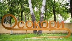 osokory-01