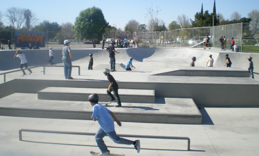 строительство скейт парка
