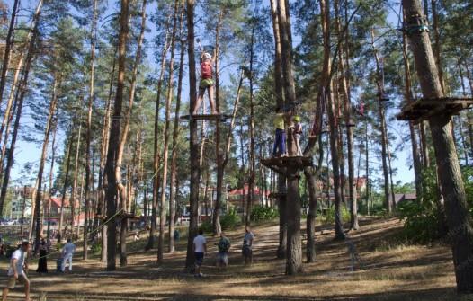 высокий веревочный парк купить