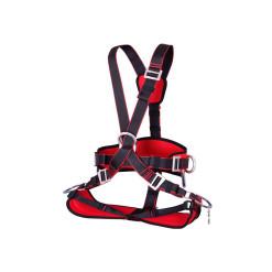 Harness Profi  Promalp-v2