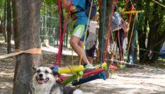 Веревочная детская площадка «ЛАЗАЛКА» для двора ,бюджетный вариант