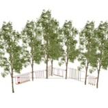 Детская веревочная площадка на деревьях ЛАЗАЛКА, 10 конкурсов